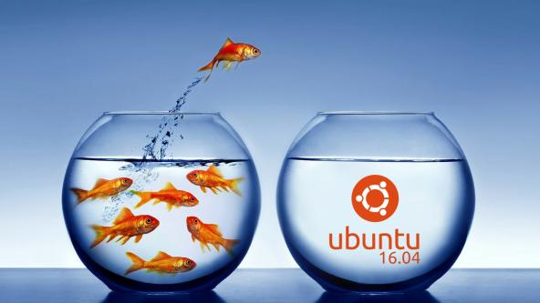 Libérate ! Con Ubuntu 16.04